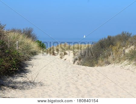 Pathway through the sand dunes heading towards the beach at Cadzand Bad in Zeeuws-Vlaanderen in the far south west of the Netherlands.