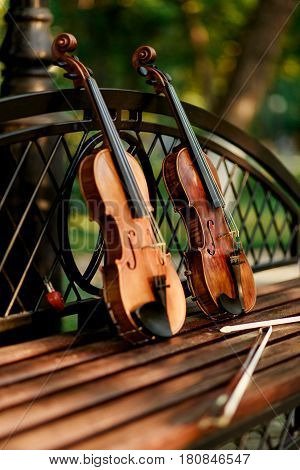 Violin music instrument of orchestra. Violins in the park on the bench.