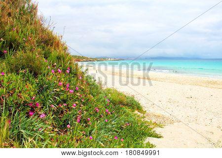 Le Bombarde beach near Alghero, Sardinia, Italy
