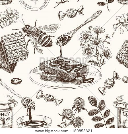 Vector hand drawn honey seamless pattern. Sketch vintage style. Design template. Retro background.