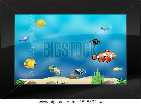 Modern aquarium in the interior with exotic marine fish. Clear glass. Vector graphics