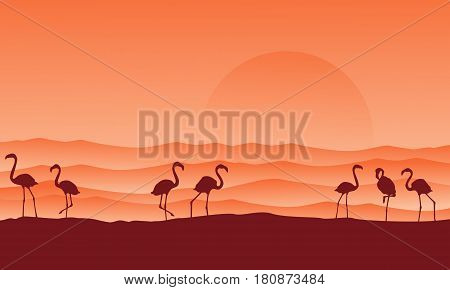 desert scenery with flamingo silhouettes vector illustration