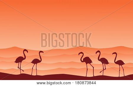 Collection hill scenery with flamingo silhouettes vector illustration