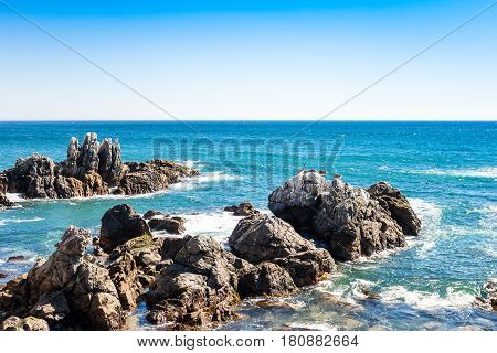 Rocks In The Ocean With Brown Pelicans In The Distance