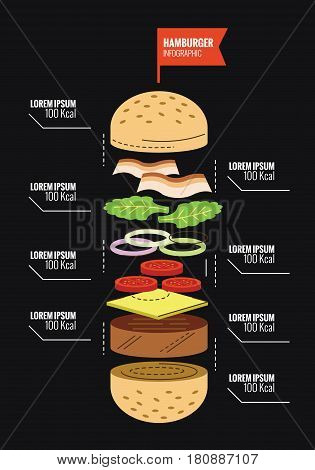 Hamburger ingredient and Calorie info graphics. flat thin line design elements. vector illustration