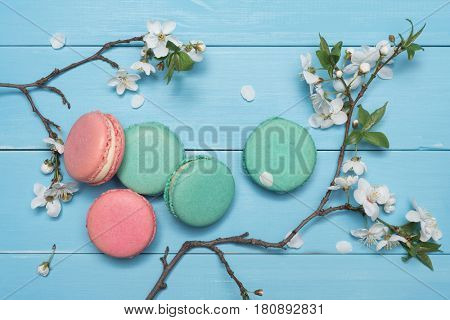 Branches of a cherry tree with white flowers on a blue wooden background. Dessert cookies of macaroons. Flat layout, top view