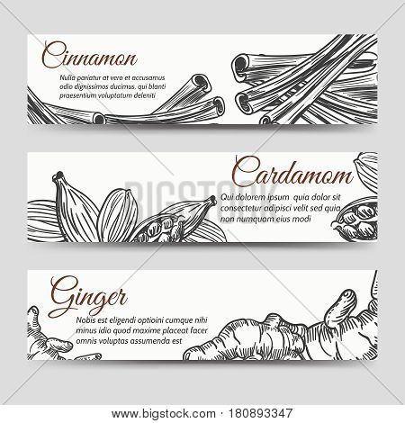 Cookery banners template with hand drawn spices for ginger bread. Vector illustration