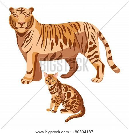 Bengal cats isolated on white. Big tiger and little spotted kitten. Domestic cat breed developed to look like exotic jungle animals such as leopards or ocelots vector illustration