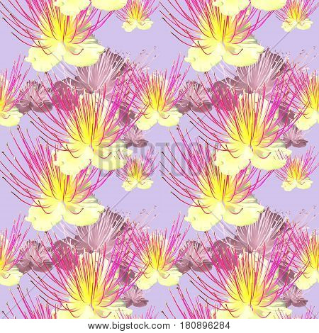 Capers. Texture of flowers. Seamless pattern for continuous replicate. Floral background photo collage for production of textile cotton fabric. For use in wallpaper covers.