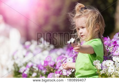 happy baby boy cute little child with blond hair in green tshirt at flowerbed with white violet blossoming flowers in spring summer park on natural background. Childhood happiness