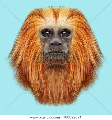 Illustrated portrait of Golden lion tamarin monkey. Cute fluffy face of primate on blue background.