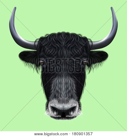 Illustrated portrait of Domestic yak. Cute fluffy black face of Bovid on green background.