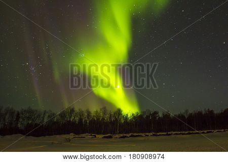 Spectacular Northern Lights (aurora Borealis) Over Snowscape