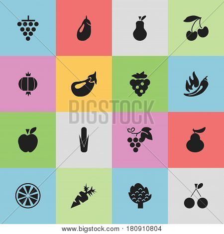 Set Of 16 Editable Fruits Icons. Includes Symbols Such As Morello Cherry, Jonagold, Duchess And More. Can Be Used For Web, Mobile, UI And Infographic Design.