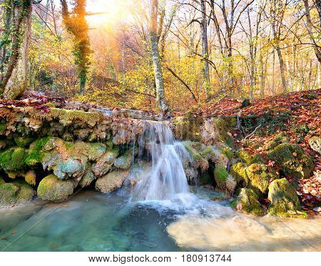 Cascade mountain river in a forest in autumn