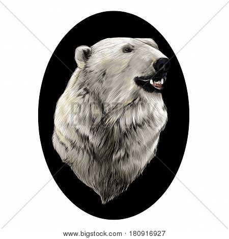 the head of the polar bear profile looking to the side sketch graphics vector colored pattern against the black circle of the oval