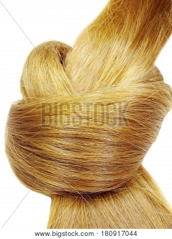 gingery hair coiffure heart shape isolated on white background