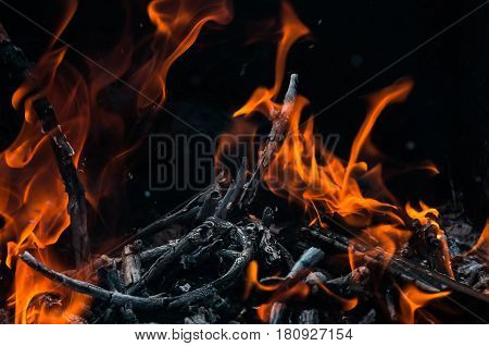 Abstract flame background: fire of burning brushwood close up forming a specific pattern.
