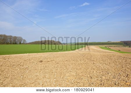 Yorkshire Wolds Agriculture In Springtime