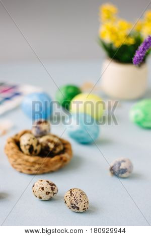 Quail Eggs Over Bright Background For Easter Celebration.