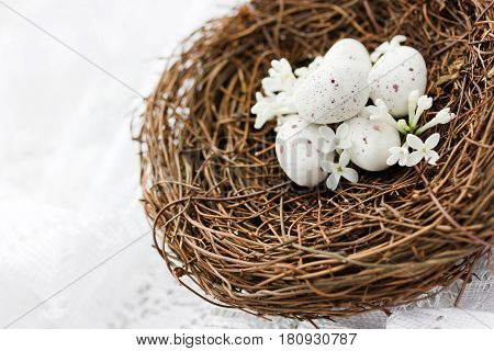 Real bird nest with small white speckled eggs