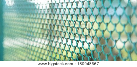 Garden green color grid fence. Metal mesh