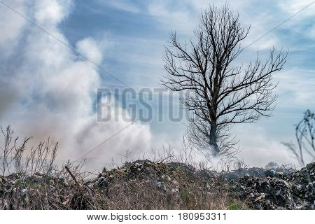 Fire at landfill with white smoke in sunny weather and clouded sky.