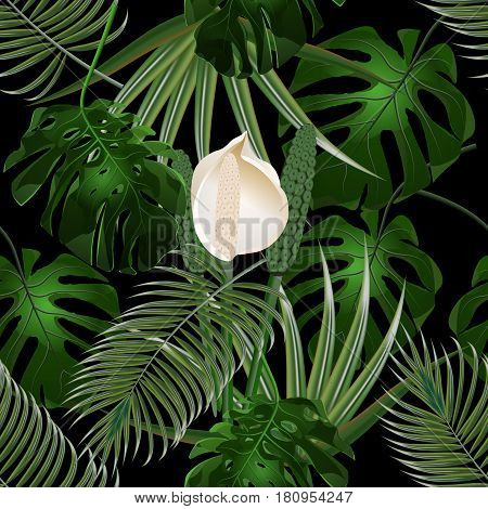 Jungle. Thickets of tropical palm leaves. Flower and monster leaves. Seamless floral pattern. Isolated on black background. Vector illustration