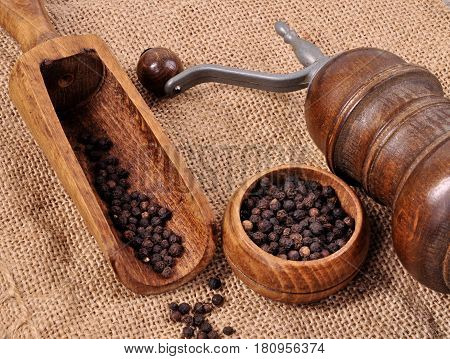 Mill for grinding pepper with a spatula on a wooden background