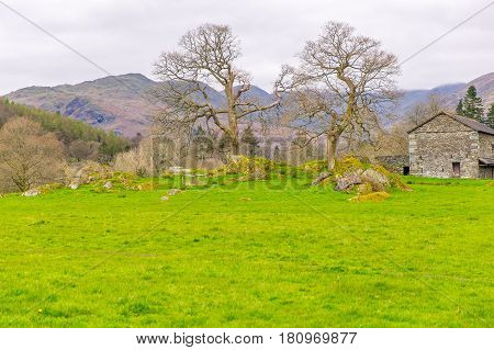 meadow with traditional stone barn in The Lake District, Cumbria,