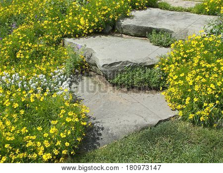 A word of caution when in this garden: watch as you walk so you do not miss a step and the beauty of the flowers.