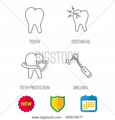 Tooth, toothache and drilling tool icons. Teeth protection linear sign. Shield protection, calendar and new tag web icons. Vector