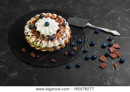 Chocolate-berry Savoyardi Ice-cream cake torte. Ingredients for blueberry ice cream cake torte and chocolate pieces. Dark black background.
