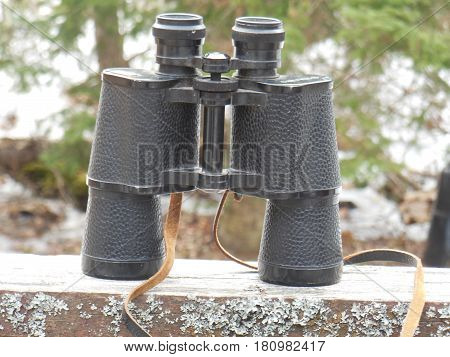 binocular black standing  see looking watching  trees