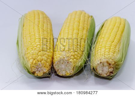 Fresh sweet corn on cobs kernels against white background corn vegetable isolated.Organic corn is a vitamin C food,magnesium-rich food & contains certain B vitamins & potassium.