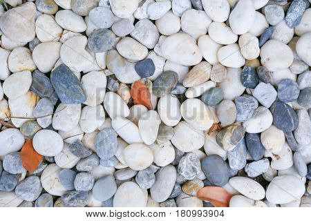 Round stone background White clean round Pebble stone texture.