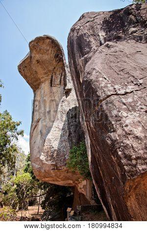 Cobra shaped rock in sigiriya sri lanka vertical view