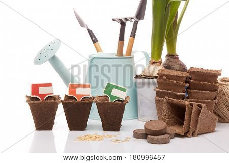 Gardening tools, watering can, peat tablets and pots, seeds and young seedlings on a white background. Concept of spring gardening.