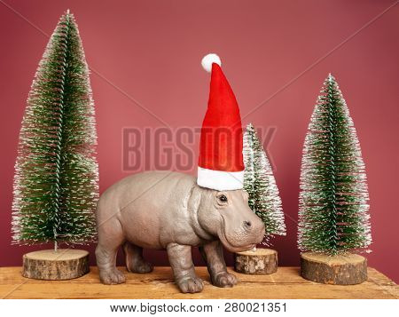 An image of a hippopotamus with santa claus hat