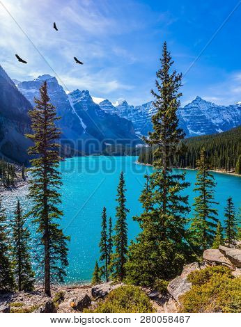Lake Moraine with emerald water. Flock of mountain eagles spinning in the sunlight. Canadian Rockies, Province of Alberta. The concept of ecological, photographic and active tourism