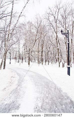 Street Lamp And Trail In The City Park In Winter