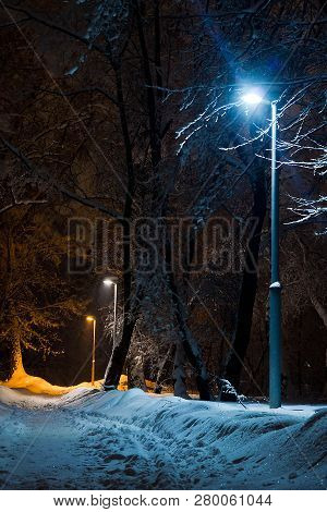 Street Lamp And Trail In Snow In The Winter Park