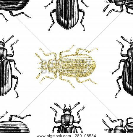 Gold Darkling Beetle Background. Seamless Pattern With Hand Drawn Bugs. Vector Insects Illustrations