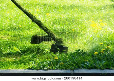 Crazy Grass Cutting With Brushcutter. Head With Nylon Line Cutting Grass And Dandelions In To Small