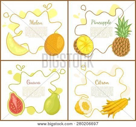 Melon And Pineapple, Posters With Text Sample. Pineapple Slice Of Tropical Products. Papaya With See