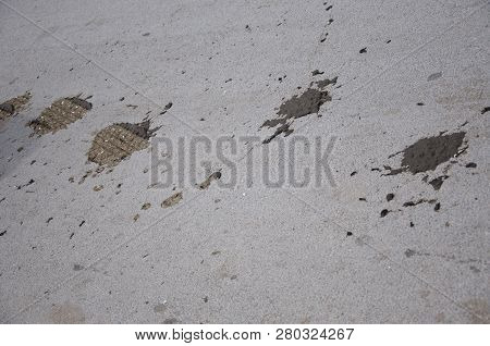 Rural Area. Tire Marks Over Cow Poop On Asphalt Road. Tire Tracks And Animal Excrement On Rural Road