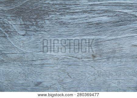 Close Up ,texture Of Bark Background,tree Texture,wood Background