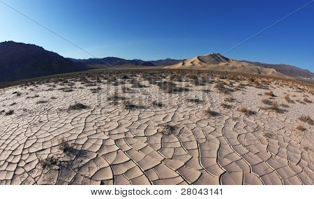 Dawn in Death Valley. Dry brush on white cracked soil. Rhotograph Fisheye lens