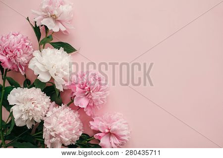 International Womens Day. Stylish Peonies Flat Lay. Pink And White Peonies Border On Pastel Pink Pap