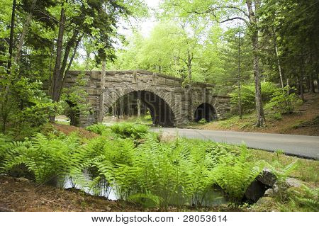 stone carriage bridge going over road at Acadia National Park poster